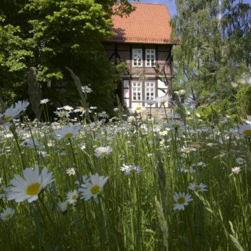 Lieber Gallhof-Besucher
