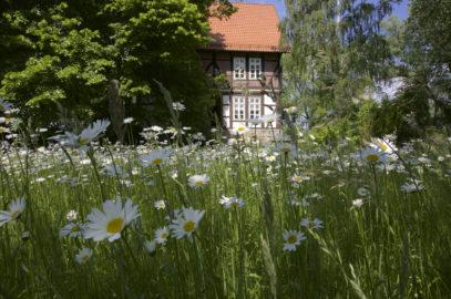 Der Gallhof Schaumburg - Unsere Homepage