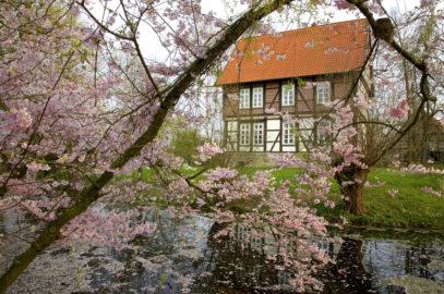 Der Frühling hat sich eingestellt auf dem Gallhof Schaumburg