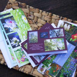 Die neuen Karten und Kalender sind da auf dem Gallhof Meerbeck