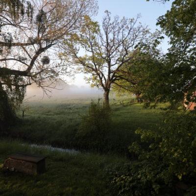Morgenstimmung auf dem Gallhof Schaumburg